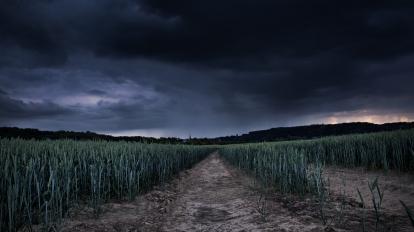 storm-field-41444